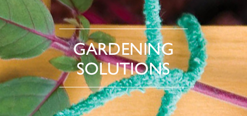 Pipe Cleaners & Flexi-Stems for Gardening
