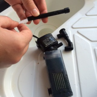 Cleaning a Fish Tank Filter with a Flexi-stem Aquarium