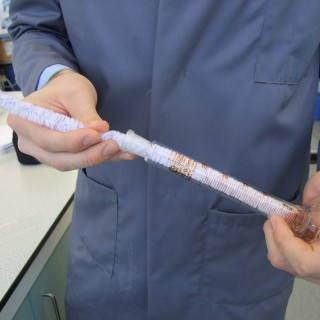 Laboratory Flexistem Pipecleaners