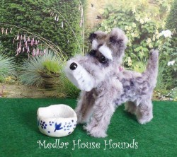 Medlar House Hounds 3